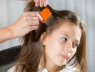 Medication-Resistant Head Lice